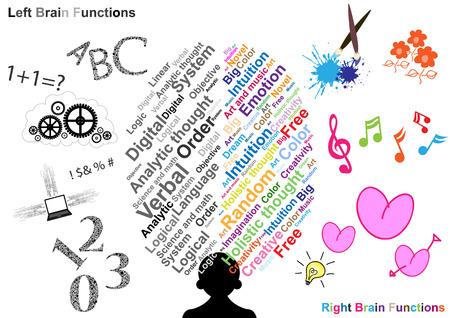 Linke und rechte Gehirnfunktion Illustration Standard-Bild - 22197021