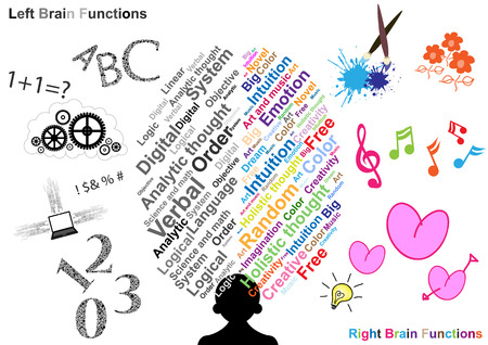 Links en Rechts hersenfunctie illustratie