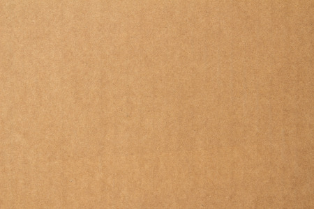 shipped: Paper texture - brown paper sheet.