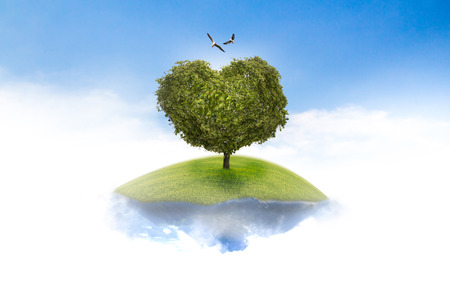 incredible: Suspended in the sky to the tree hearts