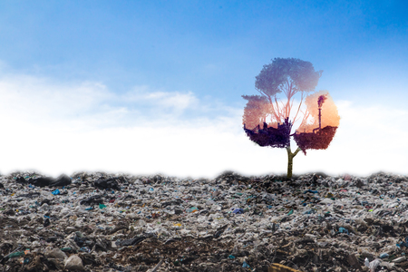 Concept recycle big alone tree in the garbage . Tree of life.