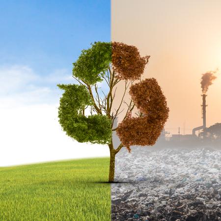 Het concept klimaat is veranderd. Halve levend en half dode boom staan bij het kruispunt. Red het milieu. Stockfoto