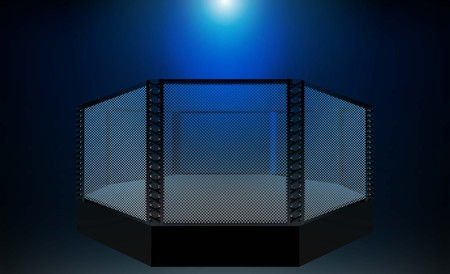 Boxing ring MMA arena and floodlights vector design. Vector illumination