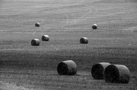 Harvested field with straw bales in central Bohemia