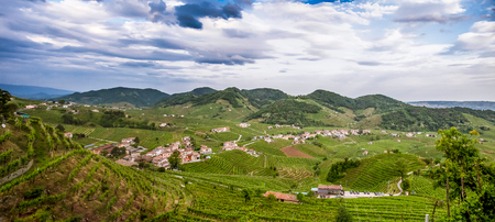 The hills covered by vineyards are Prosecco wines. Panorama of the region with vineyards and villages of the Valdobbiadene region, Italy