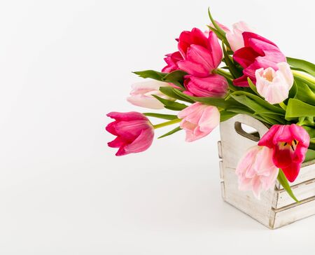 Spring Fresh multicolored tulips in box isolated on white background. Congratulation. Valentine's Day, spring, Easter. Space for text.