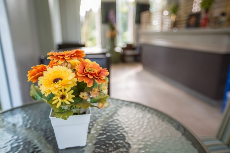 vibrancy: Plastic flower color vibrancy in a cafe