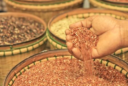 Organi rice in thailand photo
