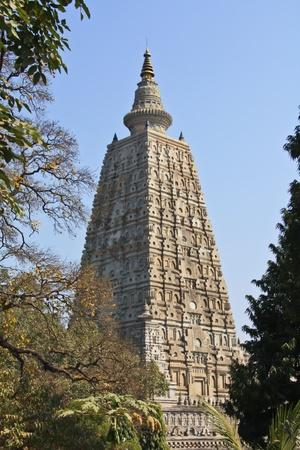 banian: Pagoda old india