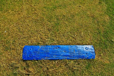 Blue wood on grasses Stock Photo - 12231666