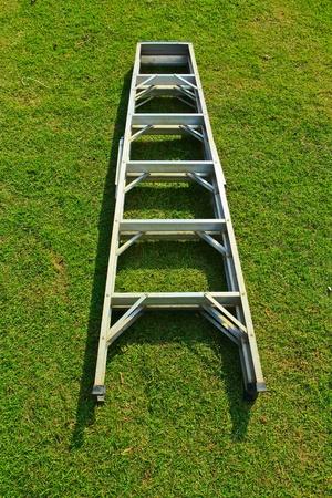 domestic task: Ladder on grasses