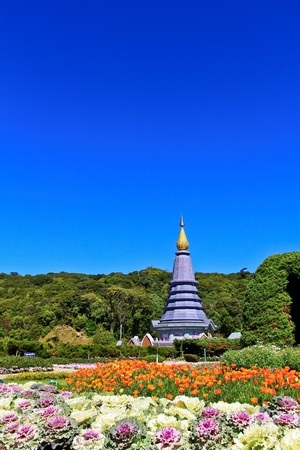 Pagoda Doi Inthanon in thailand Stock Photo - 13426271