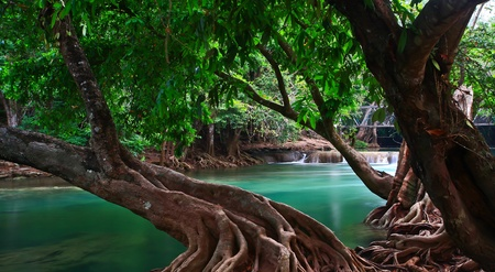 waterfall in the forest in thailand Stock Photo - 13427463