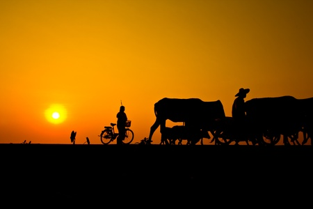sunset countryside thailand photo