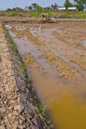 peasant farming: Peasant farming  Stock Photo
