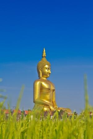 Big buddha statue at Wat muang, Thailand  photo