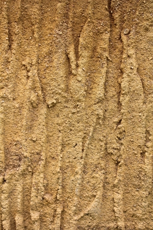 backgrounds  Wall Soil photo