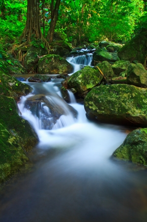 Waterfall in the forest asia thailand Stock Photo - 15848706