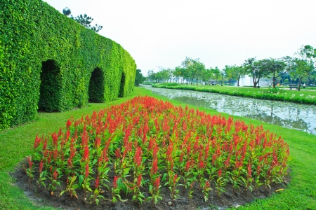 park landscaping Stock Photo - 16929026