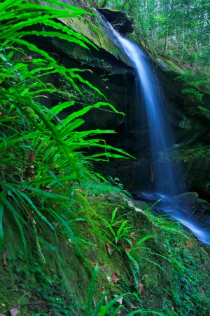 Waterfall beautiful asia Thailand Stock Photo - 17144029