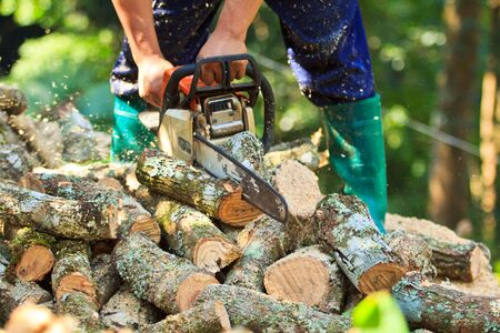 man cutting firewood for home with a chainsaw photo