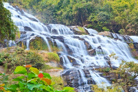 Waterfall in the forest North thailand asia
