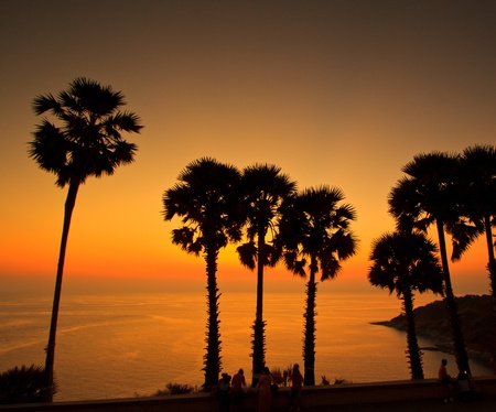 sunset at sea sugar palm Phuket Thailand  photo