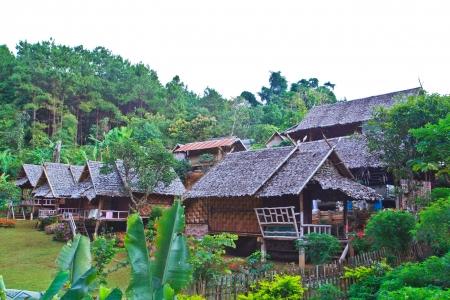 Resort and hut North of Thailand  photo