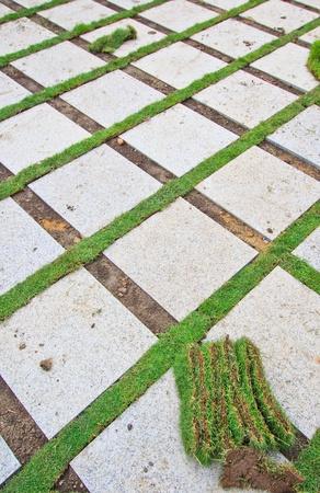 Grass Brick with manicured lawn  photo