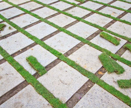 Grass Brick with manicured lawn  photo