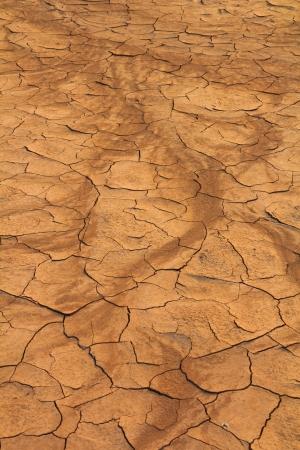 Cracked soil ground background textured  photo
