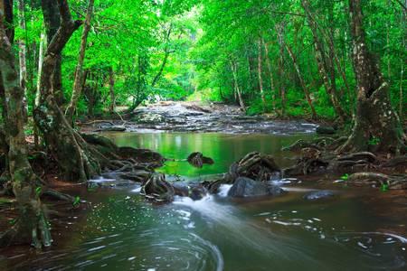 Deep forest waterfall pang sida national park sa kaeo province asia thailand Stock Photo - 21845714