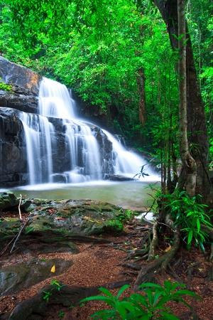 Deep forest waterfall pang sida national park sa kaeo province asia thailand  photo