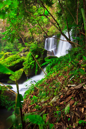 Waterfall in deep forest rom klao paradon waterfall in phu hin rong kla national park, Phitsanulok province asia southeast asia Thailand  photo