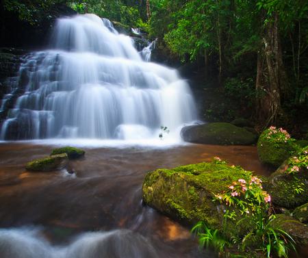 Waterfall in deep forest Mhundaeng waterfall or Man Daeng in phu hin rong kla national park, Phitsanulok province asia southeast asia Thailand  photo