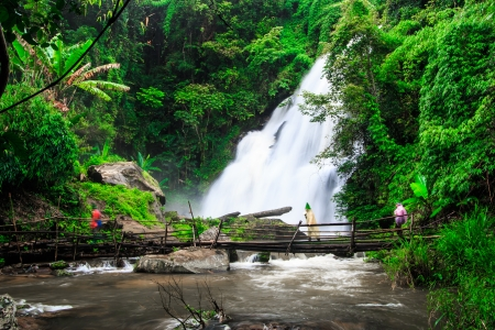 Pha Dok Xu waterfall in rainforest at Doi Inthanon National park in Chiang Mai, Province Asia Thailand  photo