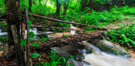 Footbridge across the falls in rainforest at Doi Inthanon National park in Chiang Mai, Province Asia Thailand  photo
