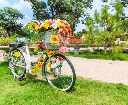 decorated bike: fiore su un prato sfondo bicicletta Archivio Fotografico