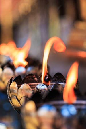 india culture: Oil lamp arranged in patterns Beautiful  Stock Photo
