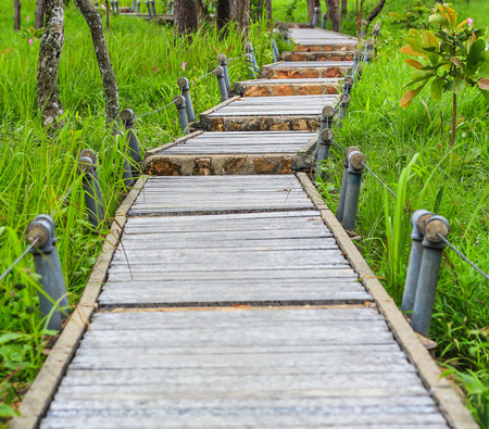 Garden Walkway - pathway into garden during day time photo