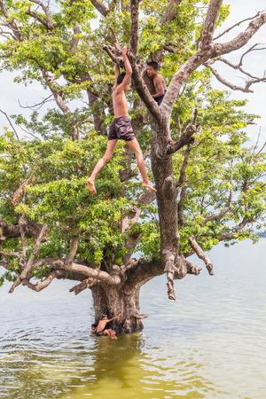 Pont U Bein, le Myanmar et le 26 août 2014: les enfants du Myanmar jouaient en sautant de l'arbre à la rivière près de pont U Bein où est le teck pont de bois la plus ancienne et la plus longue dans le monde. Éditoriale