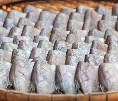 gourami: Dried fishs of local food at open market (Snakeskin gourami)