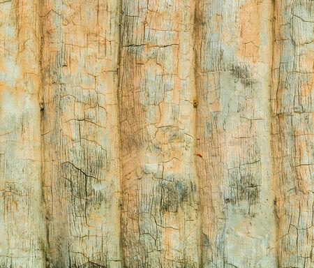 greensward: cement blackboard Stock Photo