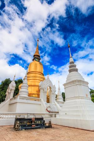 molee: Wat Suan Dok  in chiang mai  thailand