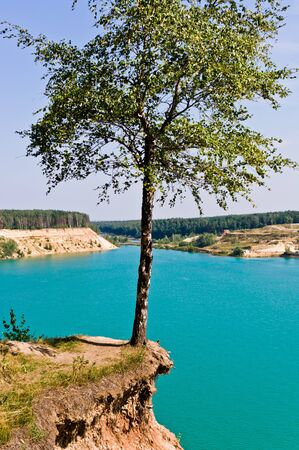 Tree over cliff, Moscow region, Russia, Europe Stock Photo - 10333504