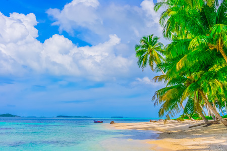 island: Desert island with palm trees, Indian Ocean, Indonesia