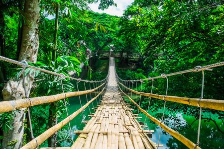 aventura: Bambú puente colgante peatonal sobre el río en el bosque tropical, Bohol, Filipinas