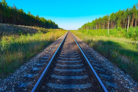 forest railroad: View of railroad track with green forest on both sides Stock Photo