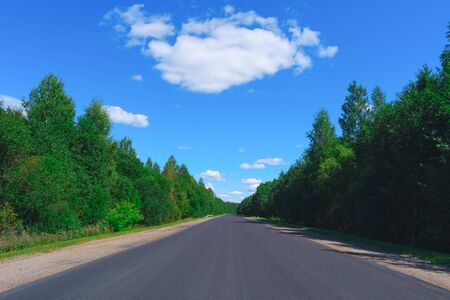 on both sides: Empty highway with green forest on both sides
