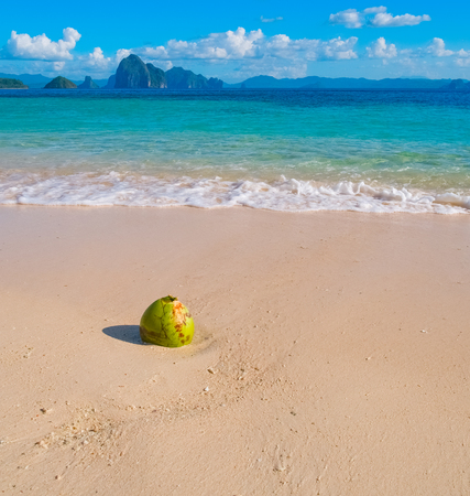 Beautiful tropical sand beach and coconut, Palawan, Philippines